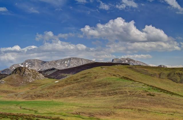 Upland pastures
